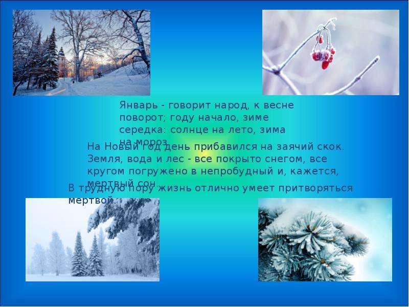 Картинки о зиме для календаря природы в детском саду