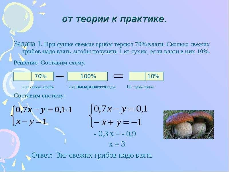плазменные выход гриба при сушке Спортмастер, Екатеринбург Тема: