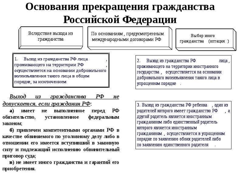 Гражданин российской федерации схема