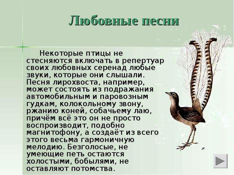 Брачные знакомства бесплатно в украине 1