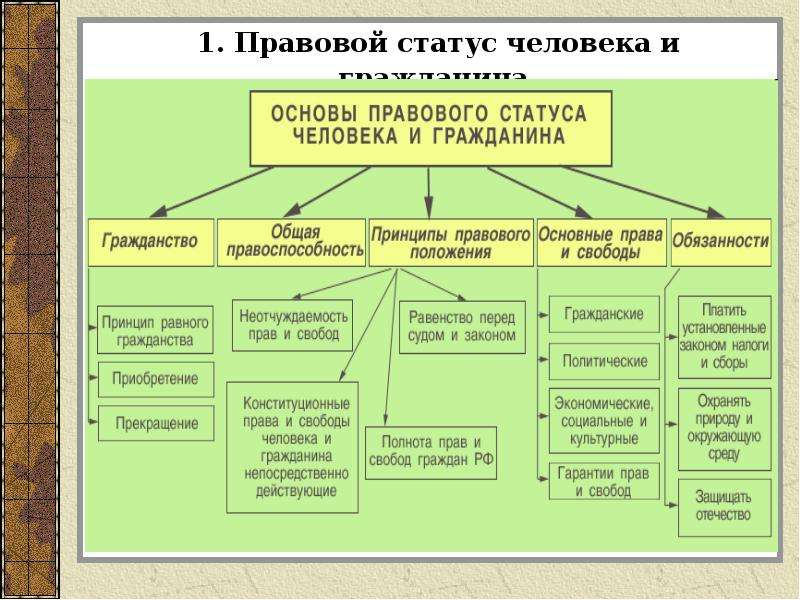 1. Правовой статус человека и гражданина