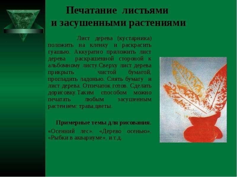 Печатание листьями и засушенными растениями Лист дерева (кустарника) положить на кленку и раскрасить