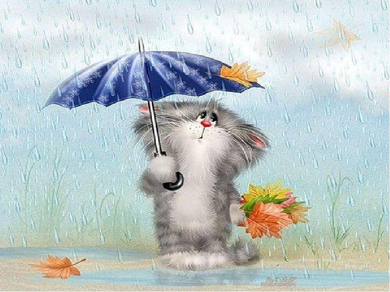 фотографирования открытки дождливая пятница итоге