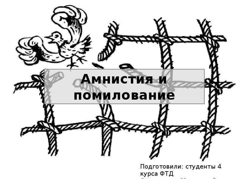 Амнистия и помилование
