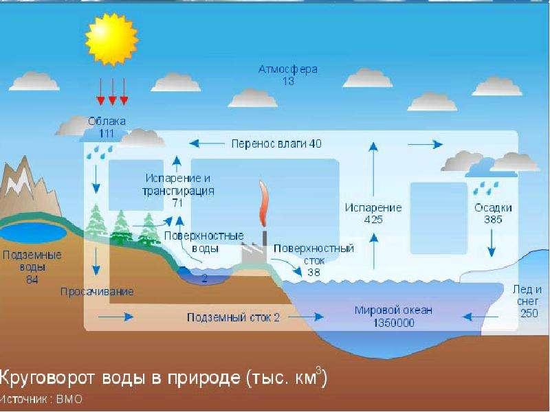 environmental risk perception ozone hole diminishing essay