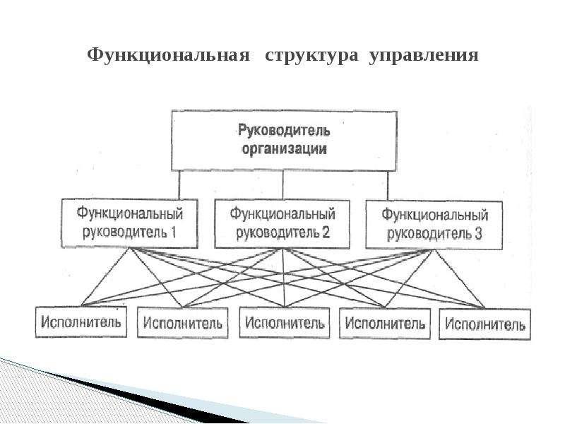 Функциональная структура управления