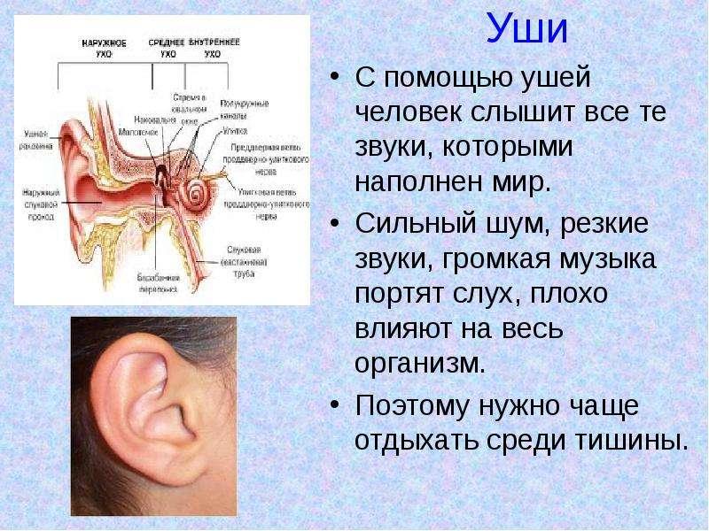 Заложило уши лечение в домашних условиях