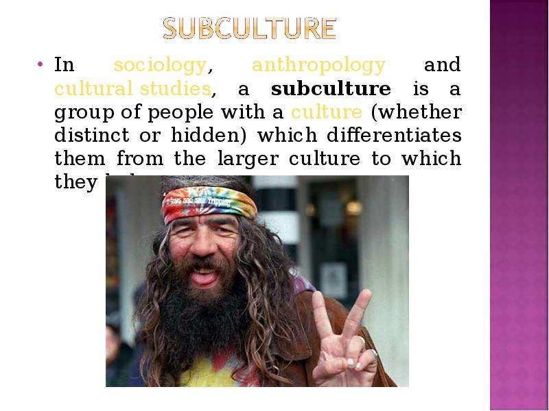 anthropology subculture A subculture can be organized around a common activity, occupation, age, status, ethnic background, race, religion, or any other unifying social condition, but the term is often used to describe deviant groups, such as thieves and drug users.