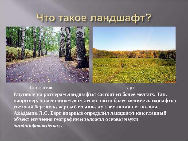 Презентация по ландшафтам