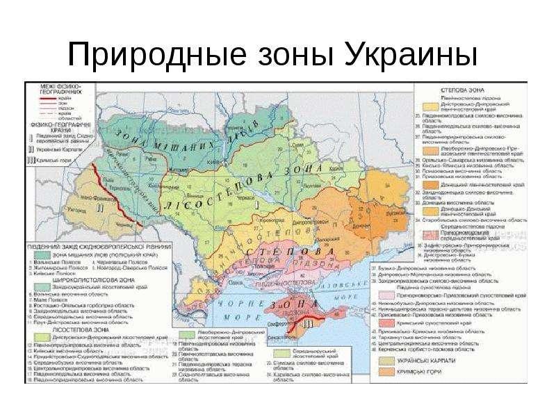 физико географическая карта
