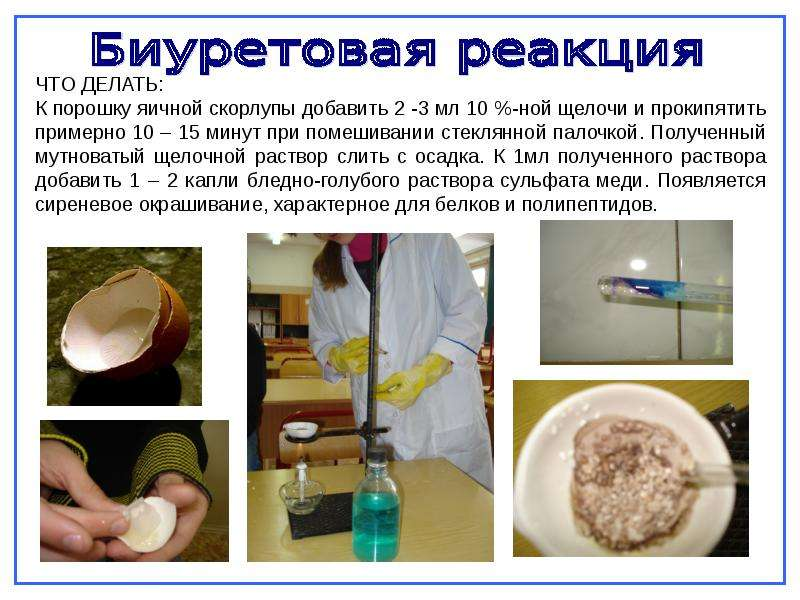 Как из яичной скорлупы сделать порошок