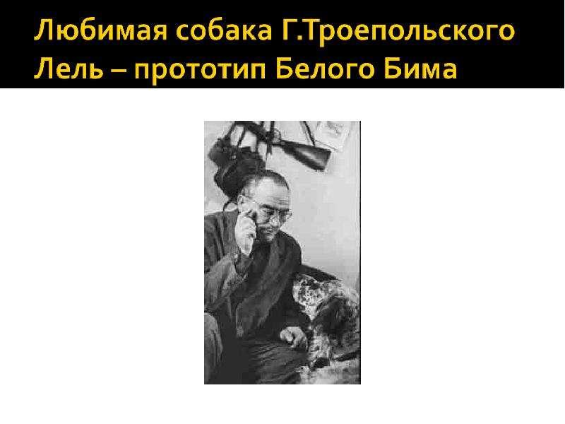 Читательская конференция по повести Г. Н. Троепольского «Белый Бим Черное Ухо», слайд 12