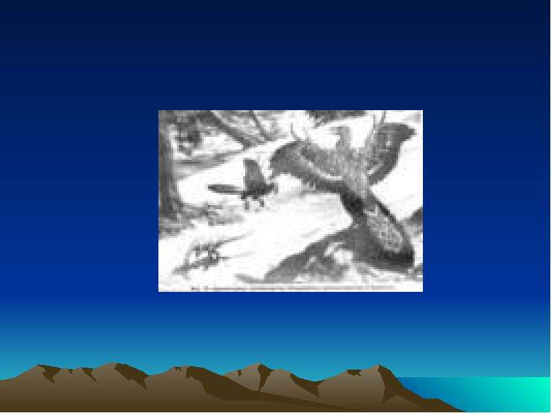 Развитие жизни на земле Мезозойская эра, слайд 3