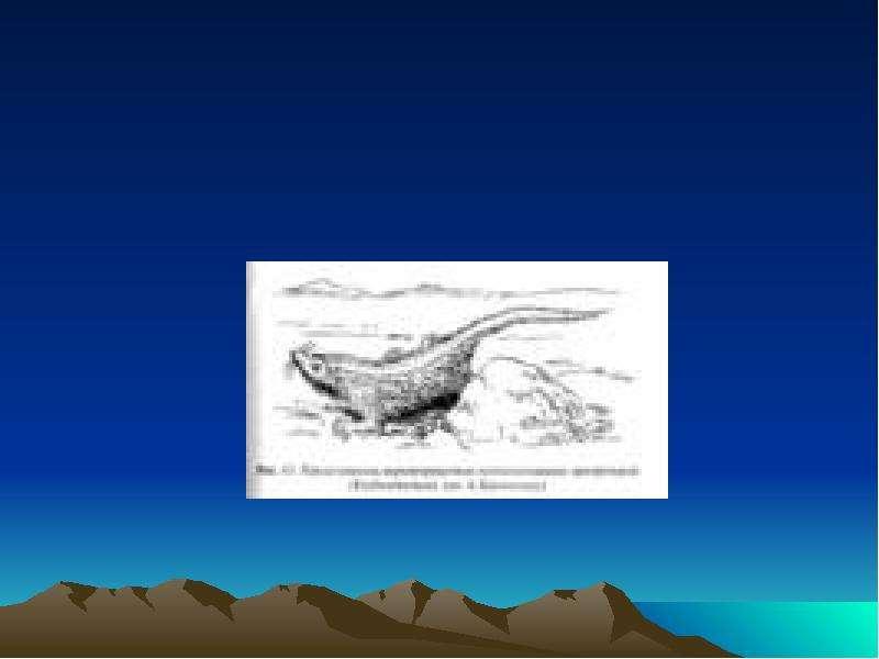 Развитие жизни на земле Мезозойская эра, слайд 5