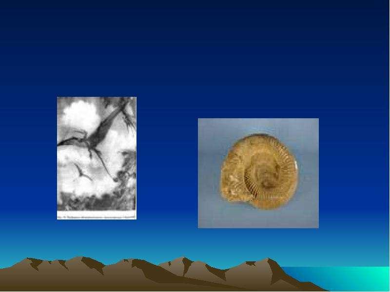 Развитие жизни на земле Мезозойская эра, слайд 7