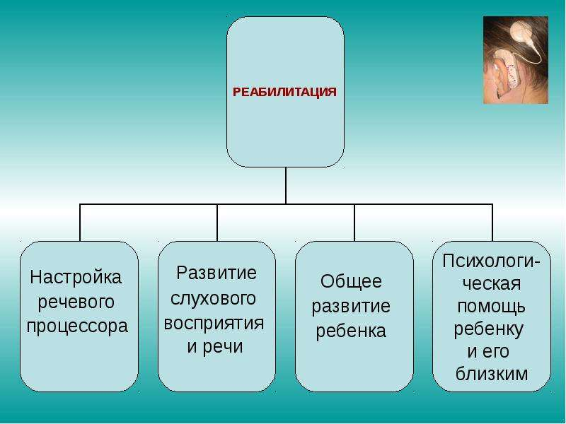 Педагогическая реабилитация детей после кохлеарной имплантации, слайд 11