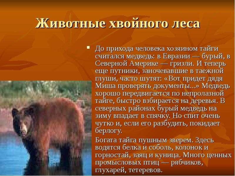 редкие животные евразии краткий разказ ОСАГО: