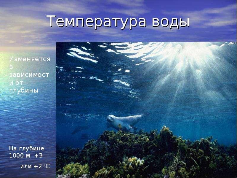 Почему на дне глубоких водоемов температура воды в морозы выше нуля