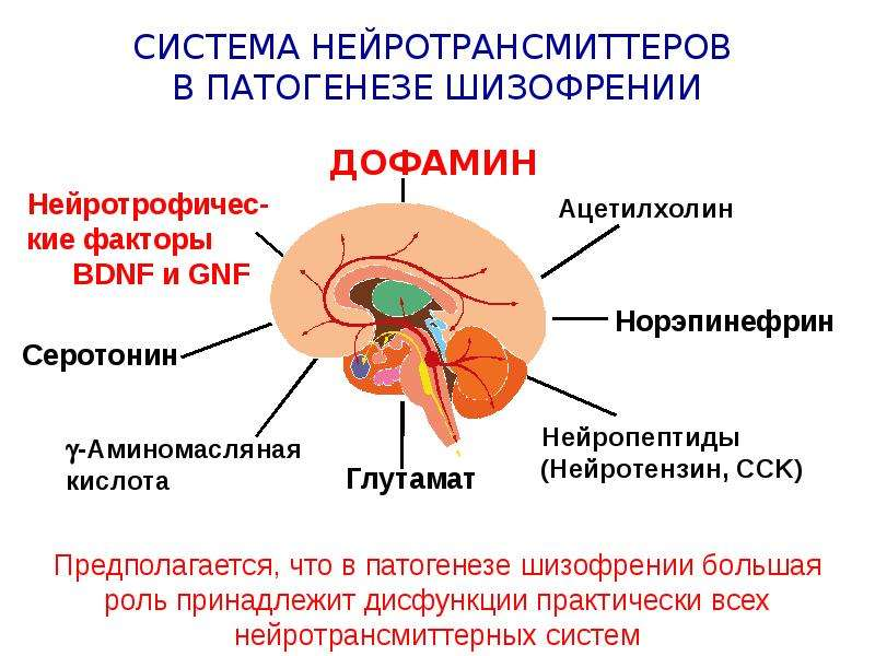 Are there alternatives to dopamine hypothesis in order
