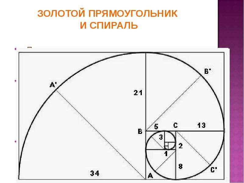 ЗОЛОТОЙ ПРЯМОУГОЛЬНИК И СПИРАЛЬ Прямоугольник с пропорциями золотого сечения называется идеальный пр