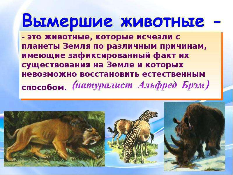 Исчезающие виды редкие животные красная книга