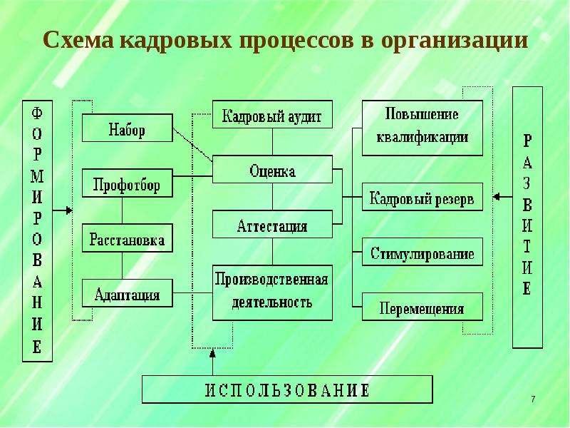 Схемы по составу кадровой службы