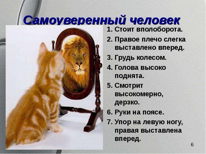 Поговорки о самоуверенности в себе