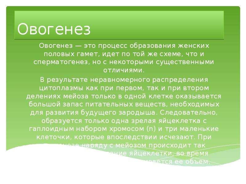 Овогенез Овогенез — это процесс образования женских половых гамет, идет по той же схеме, что и сперм