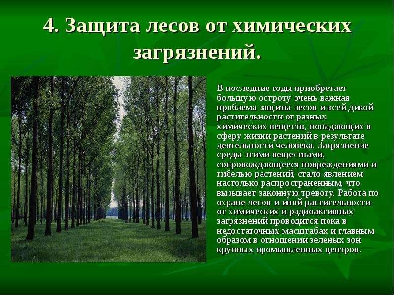 Почему различные государства заинтересованы в охране природы