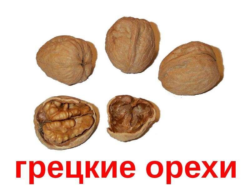 орехи - скачать презентацию