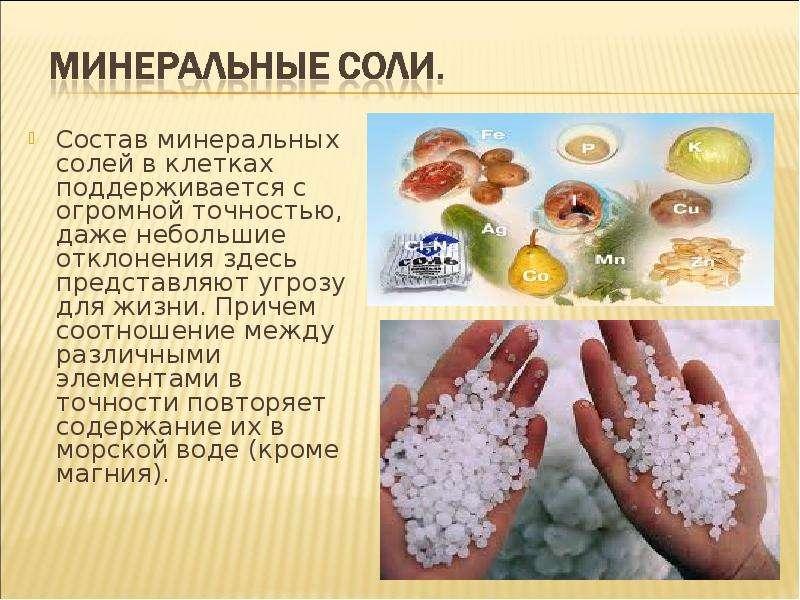 В каких минеральных солях нуждается организм человека почему