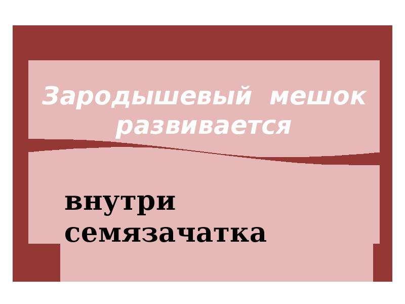 На тему Гаметогенез у растений, слайд 18