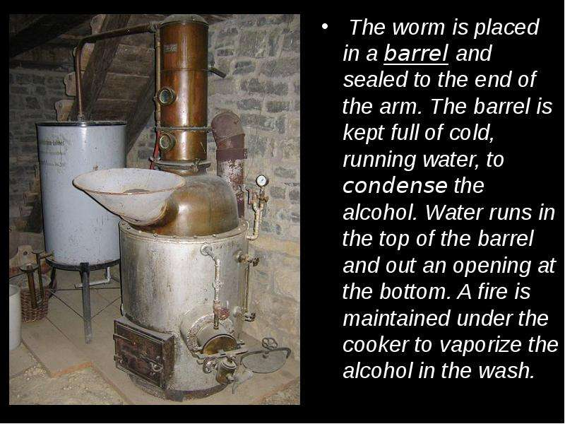 The worm is placed in a barrel and sealed to the end of the arm. The barrel is kept full of cold, ru