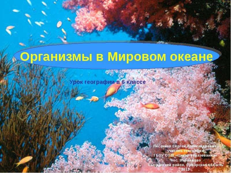 Скачать презентацию на тему загрязнение мирового океана