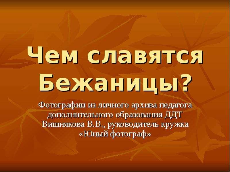 Чем славятся Бежаницы? Фотографии из личного архива педагога дополнительного образования ДДТ Вишняко