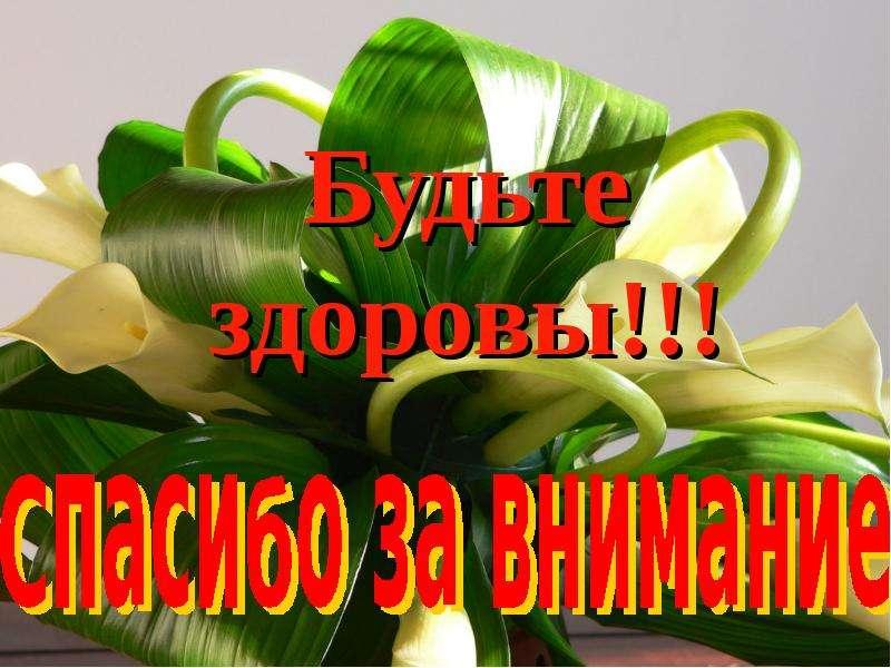 Бадеева Любовь Георгиевна учитель физической культуры высшей квалификационной категории, слайд 11