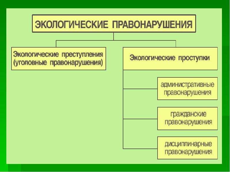 История развития земельного надзора