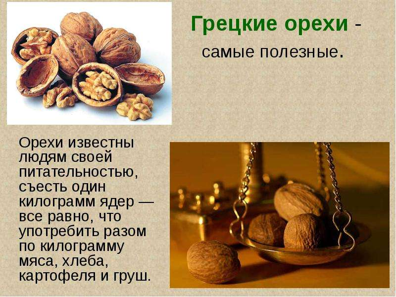 Чем полезный грецкий орех для человека
