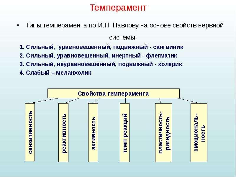 Темперамент Типы темперамента по И. П. Павлову на основе свойств нервной системы: 1. Сильный, уравно