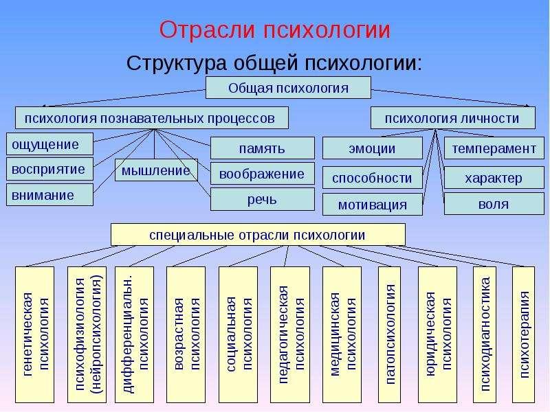 Отрасли психологии Структура общей психологии: