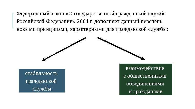 ПРИНЦИПЫ ПОСТРОЕНИЯ И ФУНКЦИОНИРОВАНИЯ СИСТЕМЫ ГОСУДАРСТВЕННОЙ СЛУЖБЫ, слайд 7