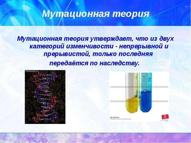Мутационная теория Мутационная теория утверждает, что из двух категорий изменчивости - непрерывной и