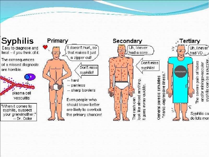 Сифилис (возбудитель - бледные трепонемы) - скачать презентацию