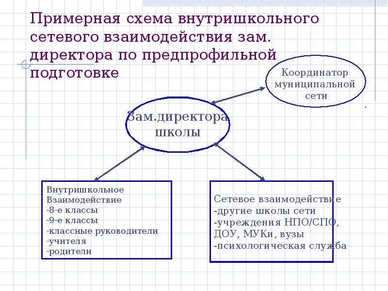 Примерная схема внутришкольного сетевого взаимодействия зам. директора по предпрофильной подготовке