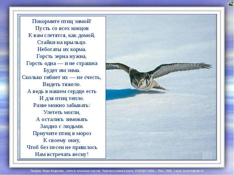 Стих о птицах класс