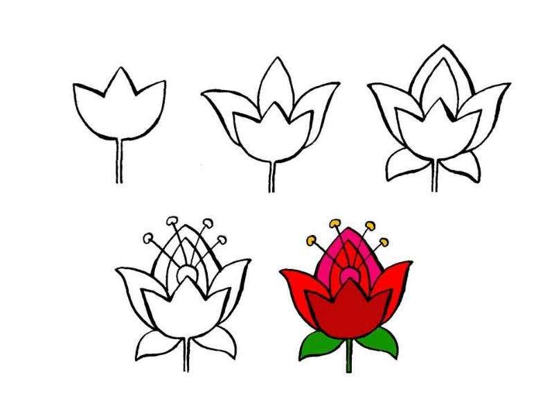Как красиво рисовать цветок