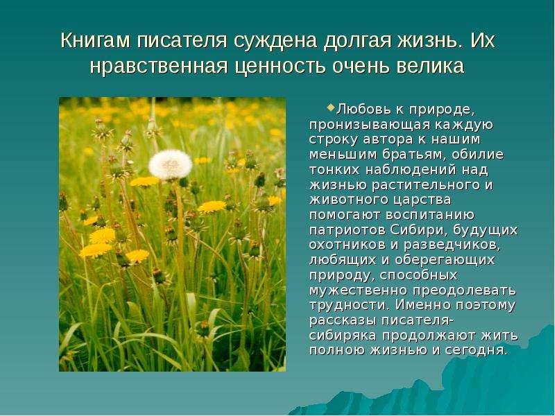 Книгам писателя суждена долгая жизнь. Их нравственная ценность очень велика Любовь к природе, прониз