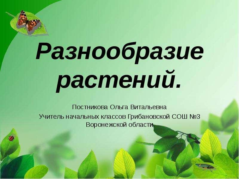 Презентация По биологии Разнообразие растений.