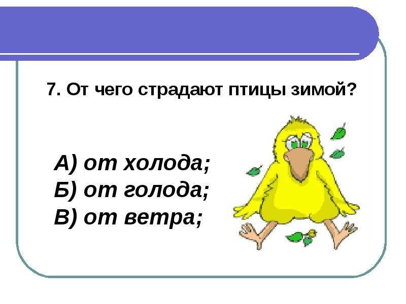 Тестовые Программы Для Начальной Школы