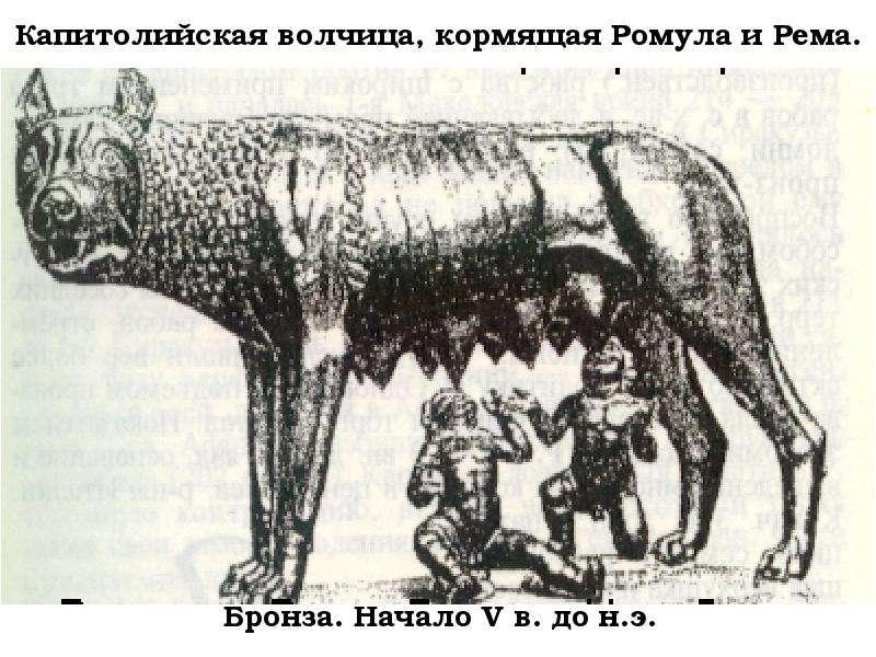 pochemu-v-rime-prostitutok-nazivali-volchitsami